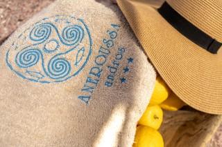 andros-beach-aneroussa-hotel-11